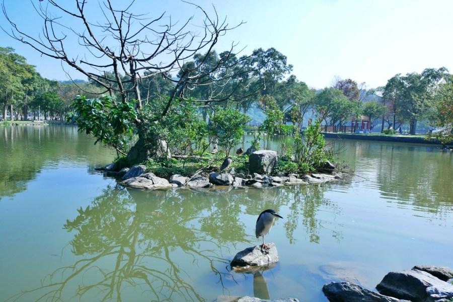[台北旅遊]大湖公園|捷運文湖線~免費景點.世界級美景錦帶橋.自然生態豐富 @VIVIYU小世界