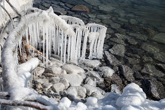 Ice Formation along the shore