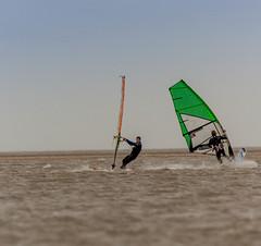 windsurfers1