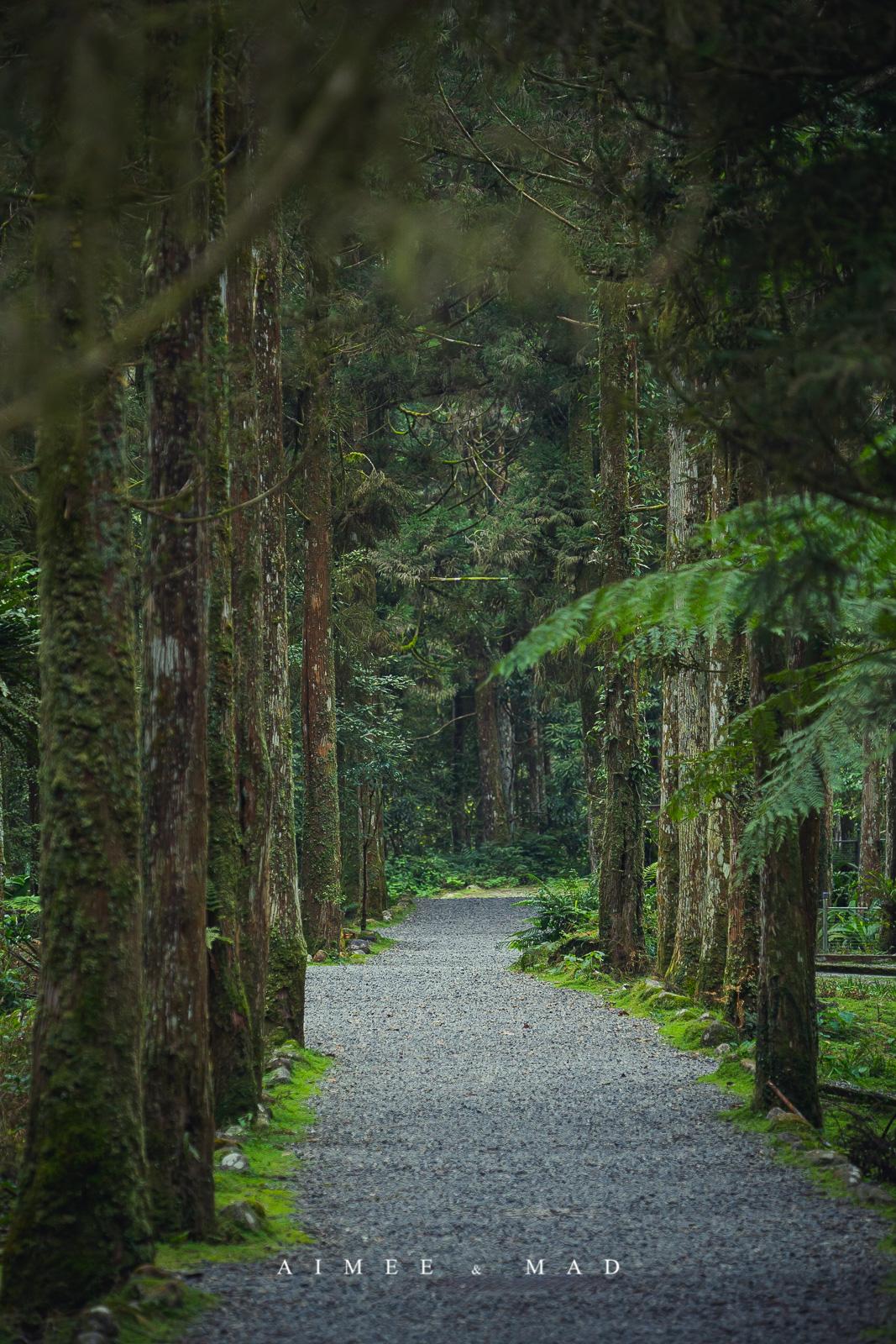 福山植物園_宜蘭_遊記
