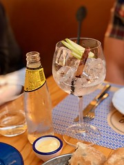 Gin and tonic with apple and cinnamon