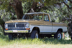 ICON_Ford_70_Reformer_F34_Shade_Under_Tree_IMG_9545_RT