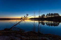 Spring Night Sunset