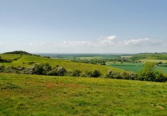 Tolsford Hill, Etchinghill