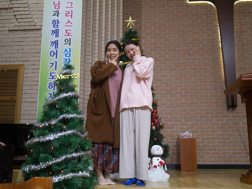 Decorating Christmas Tree_MDY_191124_20