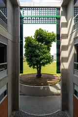 Edificio de Laboratorios Universidad Libre de Pereira