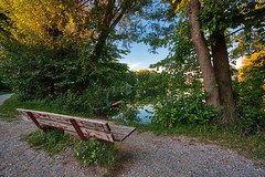 Mirando al lago / Watching the lake