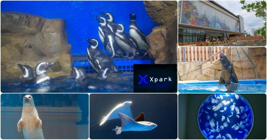 [桃園景點]全台最新水族館「Xpark」實景參觀/票價場次/地圖交通/停車價格/週邊美食一次收錄(內附影片) @VIVIYU小世界