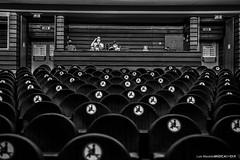 20200804 - Afonso Cabral SoundCheck @ Teatro Maria Matos - 026