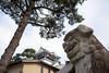 Photo:20200811 Okazaki shrines 8 By
