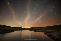 Orion Loch Thom