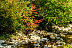 Vermont beautiful 💕🍁🍁🍁