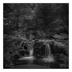 Double Falls (Film)