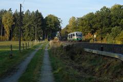 03 Trilex 642 309-8_Großhartau_25.10.20