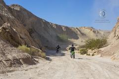 Dirt bikers ride through the desert.