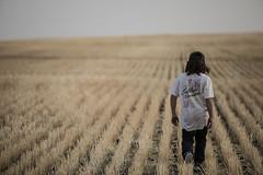 2020-09-18-wheat-fields--elliot-negelev--0120