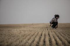 2020-09-18-wheat-fields--elliot-negelev--0140