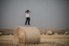 2020-09-18-wheat-fields--elliot-negelev--0025