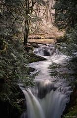 Kennedy Creek Falls