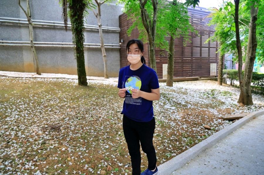 [龍潭旅遊]桃園市客家文化館|親子賞油桐花免費景點~3D立體彩繪藝術地景.大沙坑溜滑梯 @VIVIYU小世界