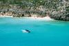 Photo:Bobbing in Shark Bay By