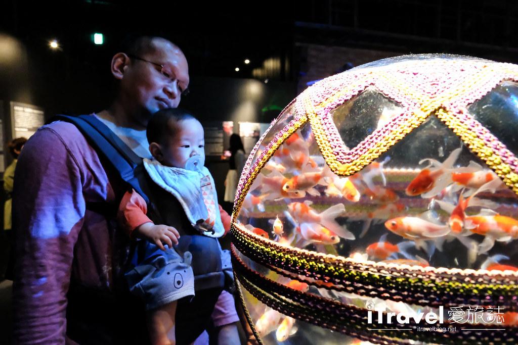 福岡展覽推薦 博多金魚の祭 (19)