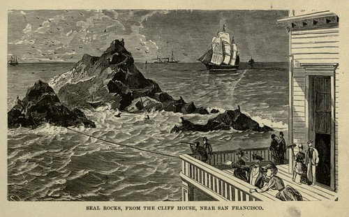 SEAL ROCKS, FROM THE CLIFF HOUSE, NEAR SAN FRANCISCO 1883
