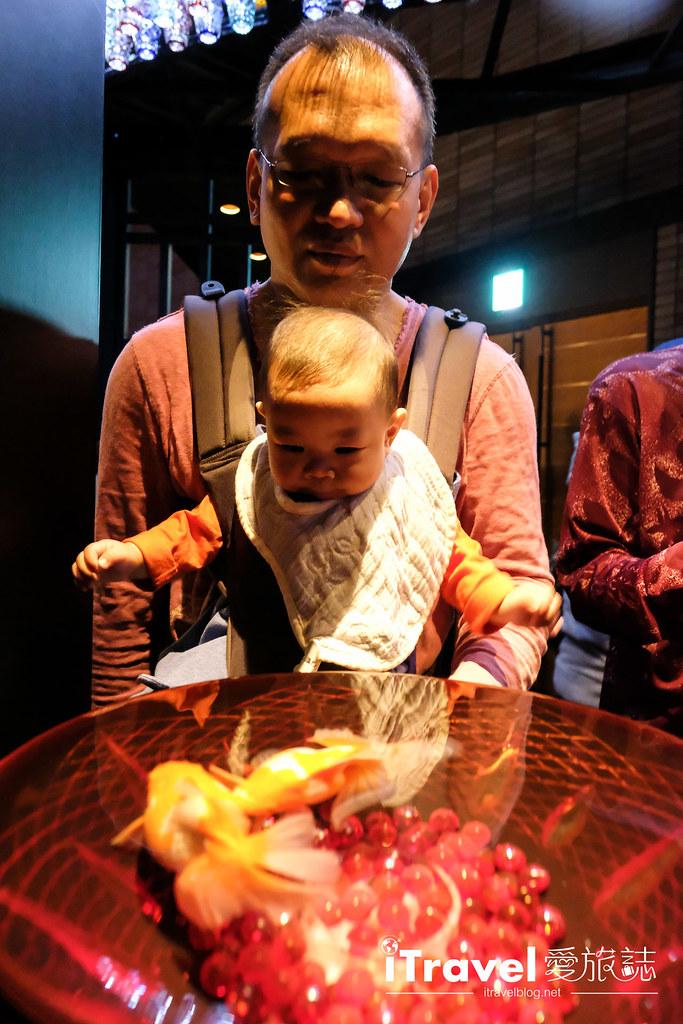 福岡展覽推薦 博多金魚の祭 (52)