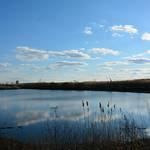 Indian Ridge Marsh