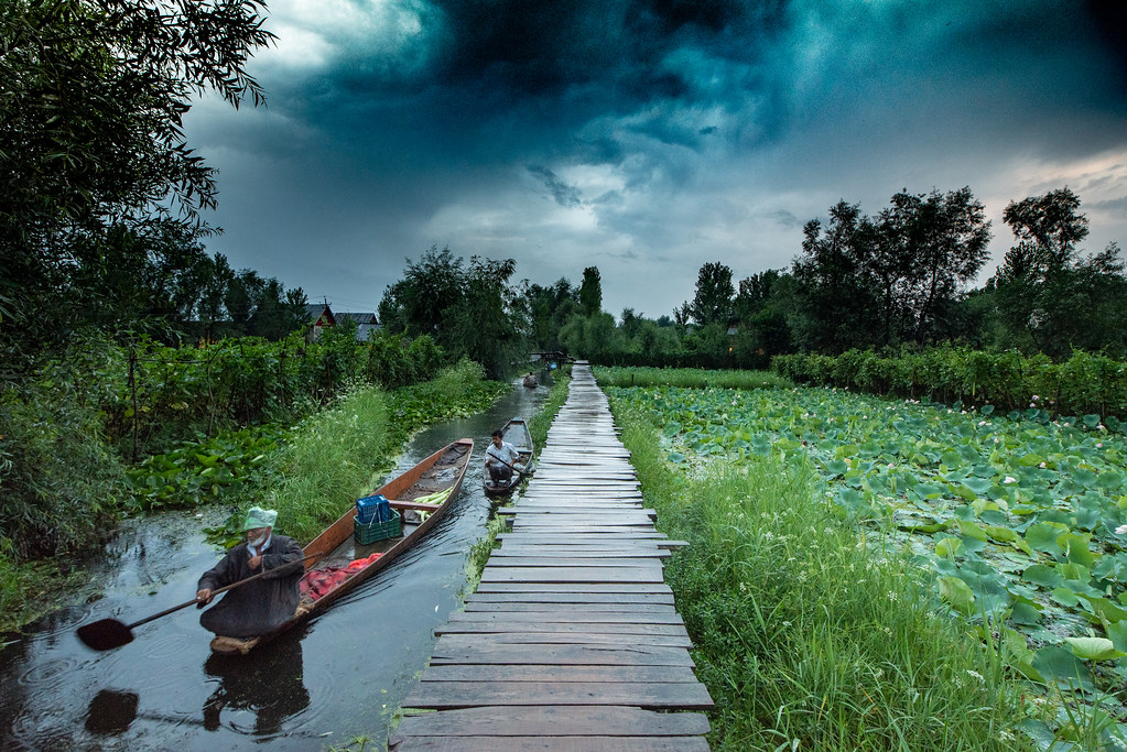 FloatingMarketDalLakeSrinagar_047