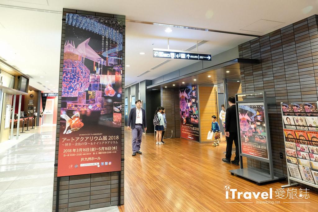 福岡展覽推薦 博多金魚の祭 (3)