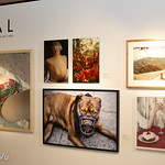 Opal Issue 2 Launch & Exhibition @ OAG Annex