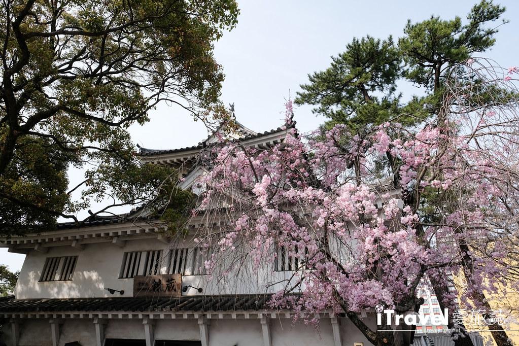 福岡小倉城 (47)
