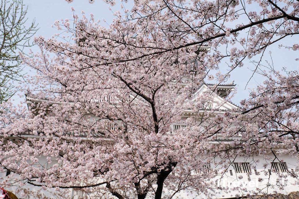 福岡小倉城 (39)