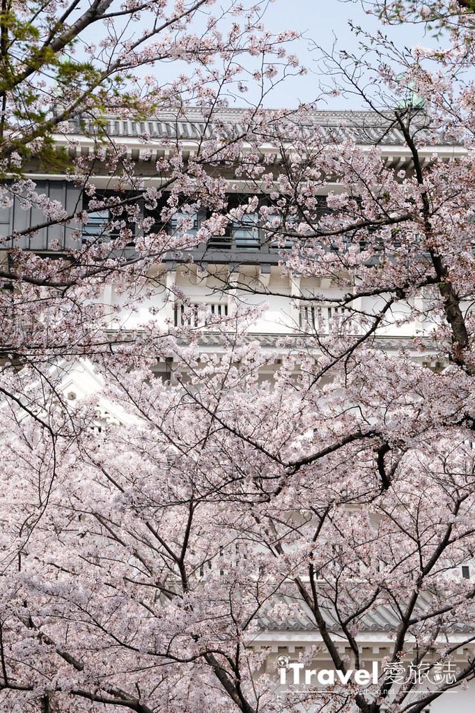 福岡小倉城 (37)