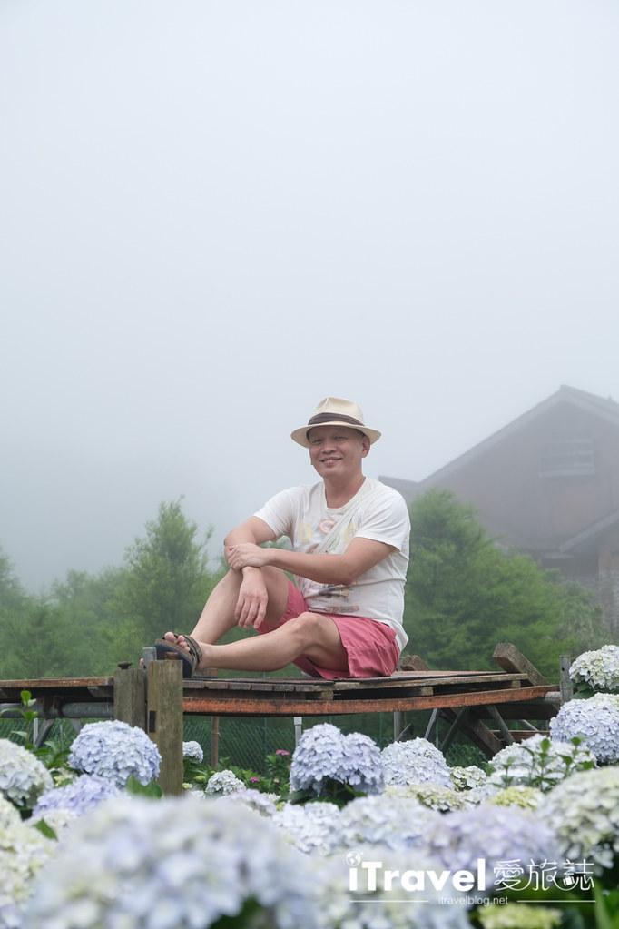 頂湖財福繡球花園 Jai Fu Garden (49)