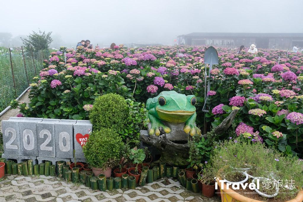 頂湖財福繡球花園 Jai Fu Garden (32)