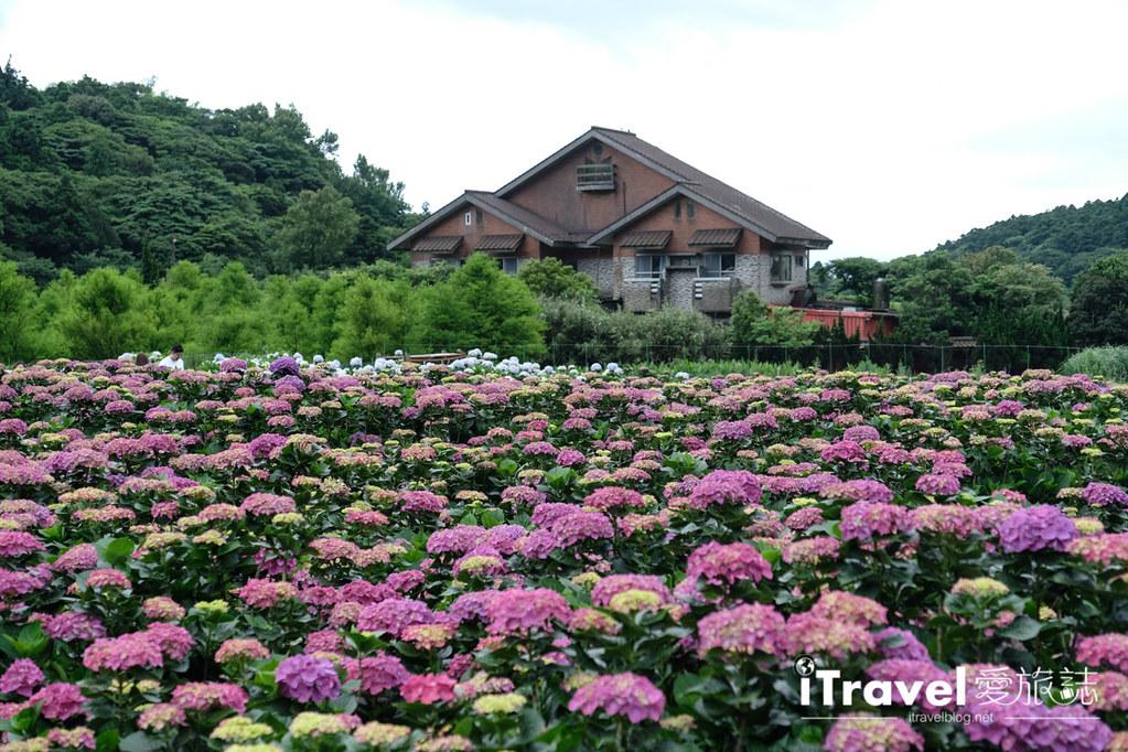 頂湖財福繡球花園 Jai Fu Garden (86)