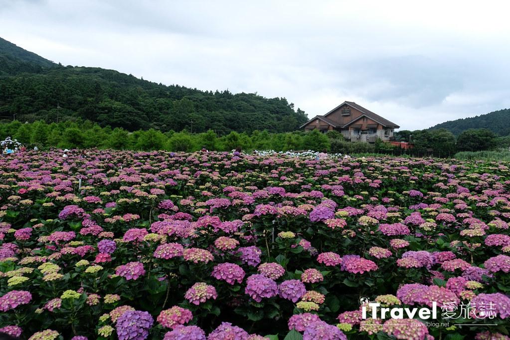 頂湖財福繡球花園 Jai Fu Garden (85)
