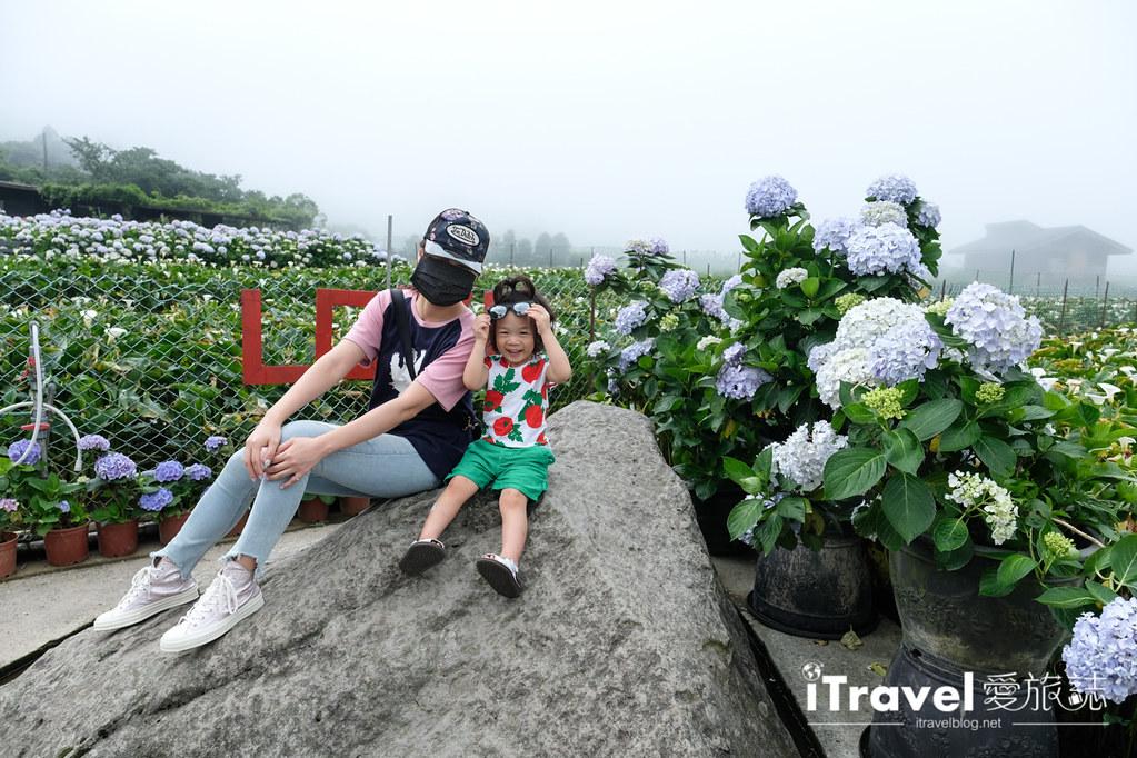 頂湖財福繡球花園 Jai Fu Garden (22)