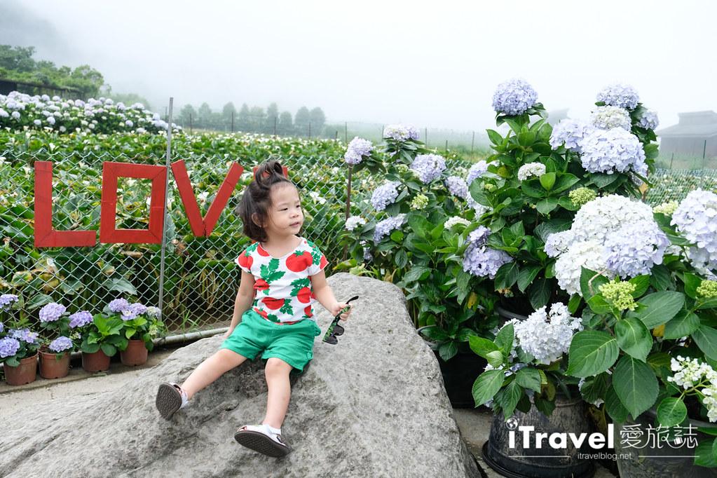 頂湖財福繡球花園 Jai Fu Garden (21)