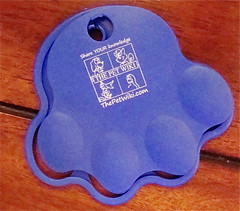 The Pet Wiki Mystery Gift-front