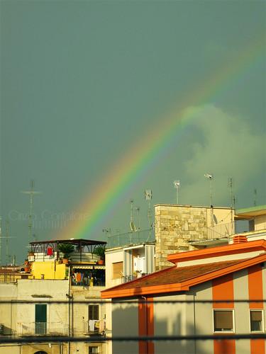 Rainbow by [Piccola_iena]