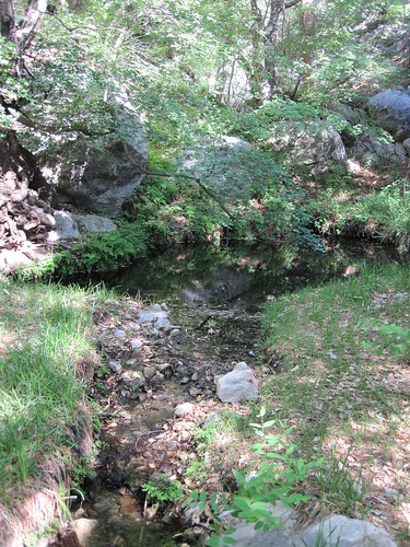 Pictures from the Frijole Trail