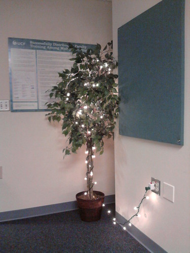 A silk tree in the corner of my office with white holiday light twined aorund it