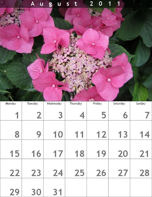Monatskalender 2011 - August