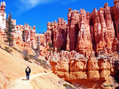 Soul Searching - Bryce Canyon NP by Fergiemoto