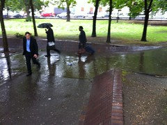 euston puddle 201107
