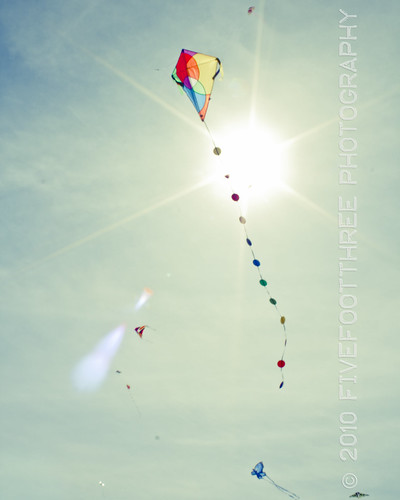 Go fly a kite...