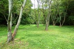 瀬上市民の森(大丸広場)(Plaza, Segami Community Woods)